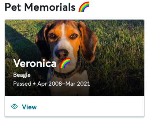 Memorialized pet profile with rainbow badge.