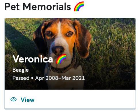 Profil d'un animal de compagnie commémoré avec un badge arc-en-ciel.